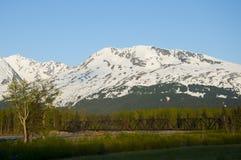 аляскский поезд Стоковая Фотография RF
