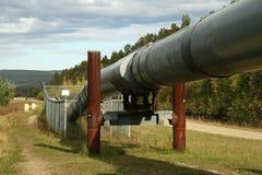 аляскский трубопровод Стоковое Фото