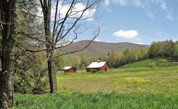 Амбары вдоль следа Creeper Вирджинии стоковое изображение rf