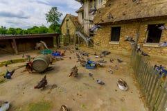 Амбар в Hameau de Ла Reine, Гамлет ферзя Стоковое Изображение RF