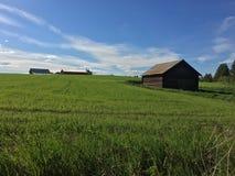 Амбар в Jämtland стоковые фотографии rf