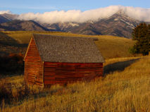 амбар Монтана стоковое фото rf