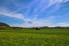 Амбар на поле лета швейцарском зеленом Стоковая Фотография RF