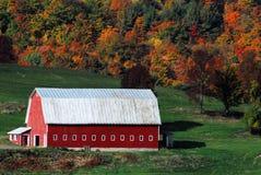 Амбар Осен-падения красный с штат Нью-Йорк листьев падения стоковое фото rf