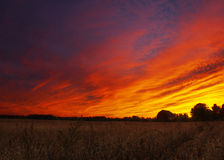 Амбар с драматическим заходом солнца и кукурузными полями Стоковая Фотография