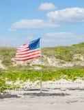 американская гордость Стоковое фото RF