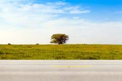 Американская проселочная дорога стоковые фото