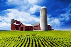 американская ферма Стоковые Фото