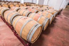 Американские бочонки дуба с красным вином вино погреба традиционное Стоковая Фотография RF