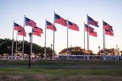 Американские флаги развевая в парке стоковые изображения