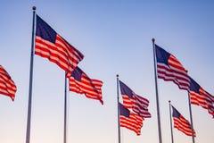 Американские флаги развевая в парке стоковое изображение