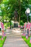 Американские флаги распространили на лужайке общественного парка как часть торжества Дня памяти погибших в войнах стоковые изображения