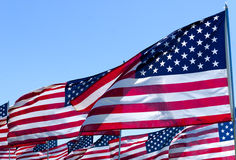 Американские флаги на поле Стоковая Фотография RF