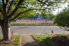 американские флаги Стоковые Изображения