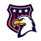 американский орел Стоковое Фото