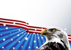 американский флаг облыселого орла Стоковые Изображения