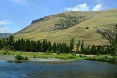 Американское большое река Стоковое Фото