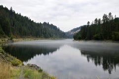 Американское большое река Стоковые Фотографии RF