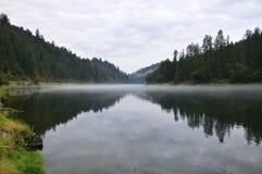Американское большое река Стоковые Изображения RF