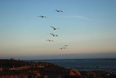 Американское западное побережье стоковое фото rf