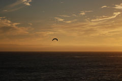 Американское западное побережье стоковые изображения rf