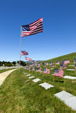 американское кладбище flags соотечественник Стоковые Изображения