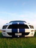 американское самомоднейшее musclecar Стоковые Изображения RF