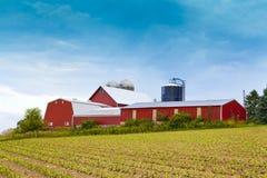 Американское сельскохозяйственне угодье Стоковые Фотографии RF