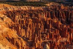 Амфитеатр каньона Bryce стоковое изображение rf