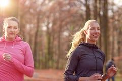 2 дамы привлекательных пригонки молодых вне jogging Стоковая Фотография RF