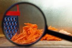 Анализ качества морковей Поиск для особенностей используя лупу стоковое изображение rf