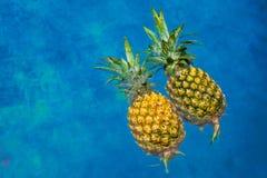 2 ананаса в бассейне Стоковое фото RF