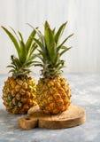 2 ананаса над серой предпосылкой Стоковые Фото