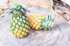 2 ананаса на деревянной предпосылке grunge Стоковые Изображения RF