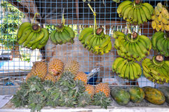 Ананасы, бананы и папапайя Стоковое Фото