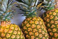 ананасы Стоковые Фото