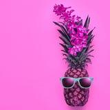 Ананас битника моды Тропическое настроение лета Стоковые Изображения