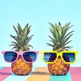 Ананас 2 битников в солнечных очках на пляже Стоковая Фотография RF