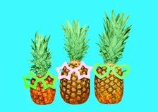 3 ананас и солнечные очки на голубой предпосылке, ананасе Стоковая Фотография