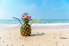 ананас коктеила тропический Стоковое Фото
