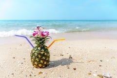ананас коктеила тропический Стоковые Фото