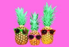 Ананас моды 3 с солнечными очками на розовой предпосылке Стоковые Изображения RF