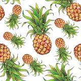 Ананас на белой предпосылке Отметки чертежа цвета плодоовощ тропический картина безшовная Стоковые Изображения RF