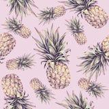 Ананас на розовой предпосылке Иллюстрация акварели красочная плодоовощ тропический картина безшовная Печать лета Стоковые Фотографии RF