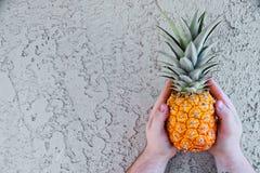 Ананас против стены в руках ` s человека, маленький ананас младенца Стоковые Изображения