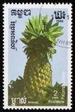 Ананас серия ` плодоовощей ` изображений экзотического около 1986 Стоковое Фото