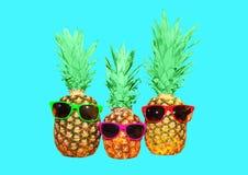 Ананас 3 с солнечными очками на голубой предпосылке, ананасе Стоковые Изображения