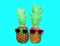 Ананас 2 с солнечными очками на голубой предпосылке, ананасе Стоковые Фото