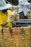 ананас человека Стоковые Фото