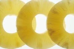 ананас Стоковые Фотографии RF